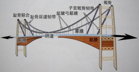 房车吊床结构图片